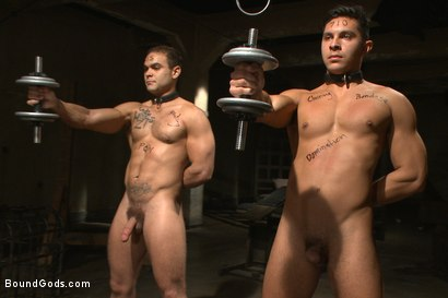 Photo number 5 from Christian Wilde abuses and fucks the boys in the Holiday Live Shoot! shot for Bound Gods on Kink.com. Featuring Christian Wilde, Seth Santoro, Brock Avery and Van Darkholme in hardcore BDSM & Fetish porn.