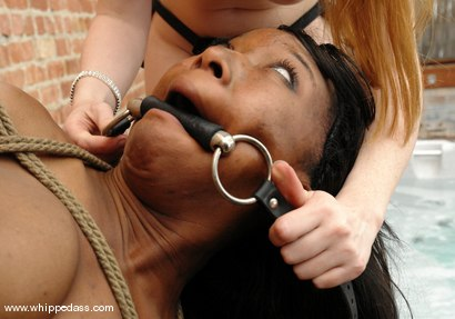 Photo number 13 from Natali Demore and Stacey Cash shot for Whipped Ass on Kink.com. Featuring Natali Demore and Stacey Cash in hardcore BDSM & Fetish porn.