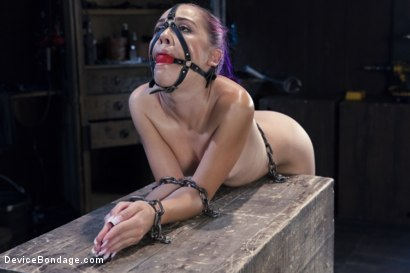 Photo number 4 from Hard Steel - Kristina Rose shot for Device Bondage on Kink.com. Featuring Kristina Rose and Orlando in hardcore BDSM & Fetish porn.