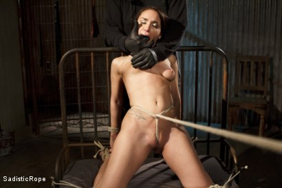Photo number 11 from Taking One for the Team shot for Sadistic Rope on Kink.com. Featuring Gabriella Paltrova in hardcore BDSM & Fetish porn.