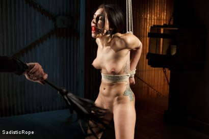Photo number 15 from Taking One for the Team shot for Sadistic Rope on Kink.com. Featuring Gabriella Paltrova in hardcore BDSM & Fetish porn.