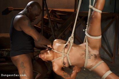 Photo number 10 from Hard and Fast shot for Dungeon Sex on Kink.com. Featuring Lotus Lain and Jack Hammer in hardcore BDSM & Fetish porn.