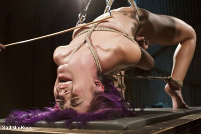 Photo number 4 from Day of Reckoning  shot for Sadistic Rope on Kink.com. Featuring Kristina Rose in hardcore BDSM & Fetish porn.