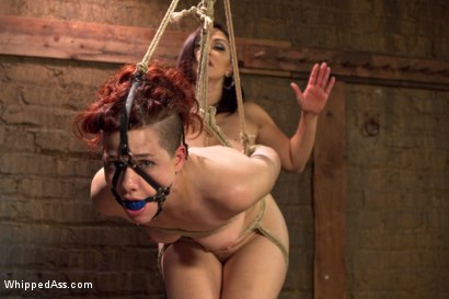 Photo number 7 from Lesbian Sex Dungeon shot for Whipped Ass on Kink.com. Featuring Lea Lexis and Ingrid Mouth in hardcore BDSM & Fetish porn.