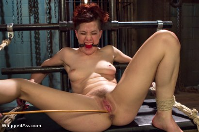 Photo number 8 from Lesbian Sex Dungeon shot for Whipped Ass on Kink.com. Featuring Lea Lexis and Ingrid Mouth in hardcore BDSM & Fetish porn.