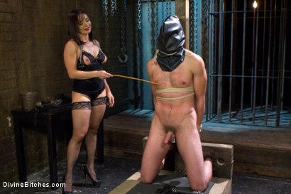 Photo number 3 from Oiled Ass Worship and Power Tools shot for Divine Bitches on Kink.com. Featuring Abel Archer and Lea Lexis in hardcore BDSM & Fetish porn.