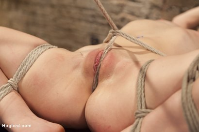 Photo number 12 from Mandy's Anal Bondage Fantasy shot for Hogtied on Kink.com. Featuring Sgt. Major and Mandy Muse in hardcore BDSM & Fetish porn.