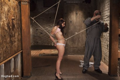 Photo number 4 from Mandy's Anal Bondage Fantasy shot for Hogtied on Kink.com. Featuring Sgt. Major and Mandy Muse in hardcore BDSM & Fetish porn.