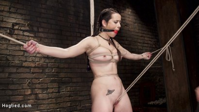 Photo number 4 from Hot Brunette in Orgasm Predicaments shot for Hogtied on Kink.com. Featuring Freya French in hardcore BDSM & Fetish porn.