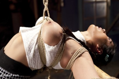 Photo number 4 from Mia Li's First Anal Bondage shot for Hogtied on Kink.com. Featuring Mia Little in hardcore BDSM & Fetish porn.
