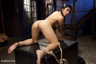 Photo number 10 from Mia Li's First Anal Bondage shot for Hogtied on Kink.com. Featuring Mia Li in hardcore BDSM & Fetish porn.