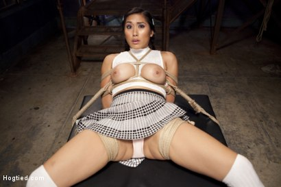 Photo number 6 from Mia Li's First Anal Bondage shot for Hogtied on Kink.com. Featuring Mia Little in hardcore BDSM & Fetish porn.