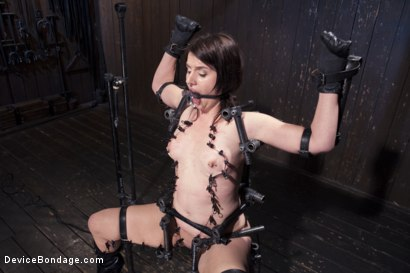 Photo number 8 from Relentless Torment  shot for Device Bondage on Kink.com. Featuring Orlando and Katharine Cane in hardcore BDSM & Fetish porn.