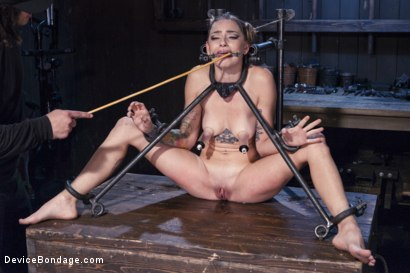 Photo number 4 from Misery shot for Device Bondage on Kink.com. Featuring Orlando and Missy Minks in hardcore BDSM & Fetish porn.