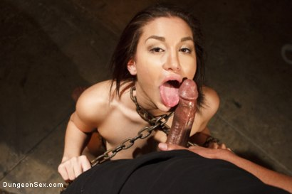 Photo number 11 from Chained, Tied, and Ass Fucked with a Massive Cock! shot for Dungeon Sex on Kink.com. Featuring Gabriella Paltrova and Mickey Mod in hardcore BDSM & Fetish porn.
