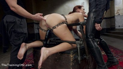 Photo number 6 from The Making of an Anal Slave, Sophia Locke Day Three shot for The Training Of O on Kink.com. Featuring Sophia Locke and Owen Gray in hardcore BDSM & Fetish porn.