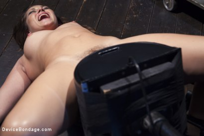 Photo number 9 from Dani Daniels - Tears for Fears shot for Device Bondage on Kink.com. Featuring Dani Daniels in hardcore BDSM & Fetish porn.