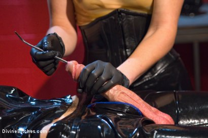 Photo number 6 from Slippery When Wet shot for Divine Bitches on Kink.com. Featuring Mona Wales and Tony Orlando in hardcore BDSM & Fetish porn.