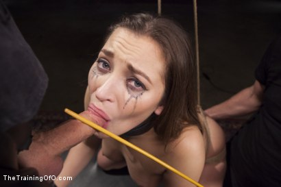 Photo number 7 from Cane Training Dani Daniels, Day Three shot for The Training Of O on Kink.com. Featuring Dani Daniels and Michael Vegas in hardcore BDSM & Fetish porn.