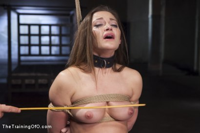 Photo number 3 from Cane Training Dani Daniels, Day Three shot for The Training Of O on Kink.com. Featuring Dani Daniels and Michael Vegas in hardcore BDSM & Fetish porn.