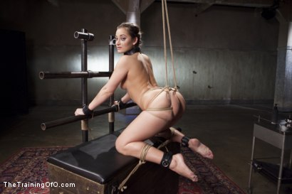 Photo number 4 from Cane Training Dani Daniels, Day Three shot for The Training Of O on Kink.com. Featuring Dani Daniels and Michael Vegas in hardcore BDSM & Fetish porn.