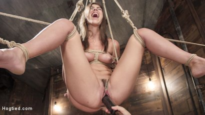 Photo number 12 from All Natural Beauty in Pile Driver Orgasm Overload shot for Hogtied on Kink.com. Featuring Rilynn Rae in hardcore BDSM & Fetish porn.