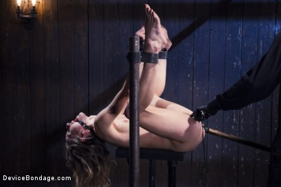 Photo number 15 from Encased, Restrained and Tormented!! shot for Device Bondage on Kink.com. Featuring Natasha Starr in hardcore BDSM & Fetish porn.
