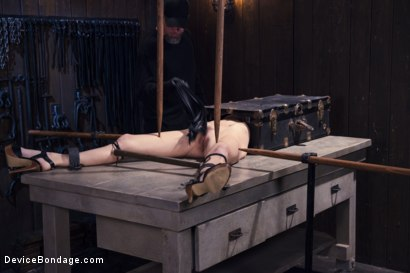 Photo number 1 from Encased, Restrained and Tormented!! shot for Device Bondage on Kink.com. Featuring Natasha Starr in hardcore BDSM & Fetish porn.