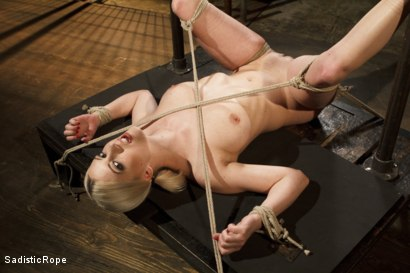 Photo number 9 from Methodical Madness!! shot for Sadistic Rope on Kink.com. Featuring Cherry Torn in hardcore BDSM & Fetish porn.