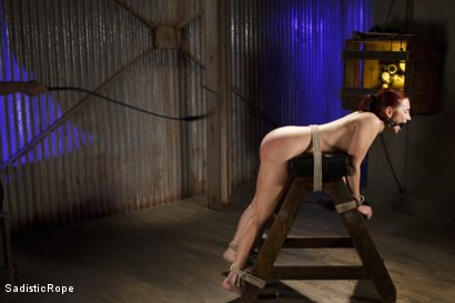 Photo number 9 from WARNING!! BRUTAL TORMENT, WATER BOARDING AND EXTREME BONDAGE!!! shot for Sadistic Rope on Kink.com. Featuring Sophia Locke in hardcore BDSM & Fetish porn.