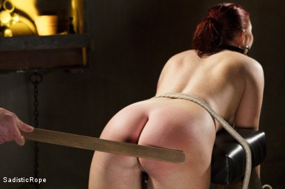 Photo number 14 from WARNING!! BRUTAL TORMENT, WATER BOARDING AND EXTREME BONDAGE!!! shot for Sadistic Rope on Kink.com. Featuring Sophia Locke in hardcore BDSM & Fetish porn.