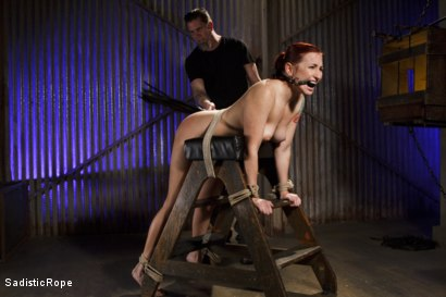 Photo number 15 from WARNING!! BRUTAL TORMENT, WATER BOARDING AND EXTREME BONDAGE!!! shot for Sadistic Rope on Kink.com. Featuring Sophia Locke in hardcore BDSM & Fetish porn.