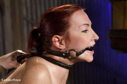 Photo number 8 from WARNING!! BRUTAL TORMENT, WATER BOARDING AND EXTREME BONDAGE!!! shot for Sadistic Rope on Kink.com. Featuring Sophia Locke in hardcore BDSM & Fetish porn.