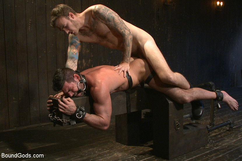 Gay captive tumblr