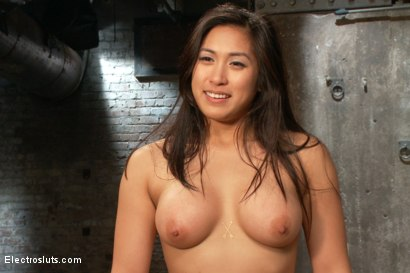 Photo number 7 from True BDSM Romance: The Destruction of Mia Li shot for Electro Sluts on Kink.com. Featuring Mona Wales, Lotus Lain, Mia Little and Lorelei Lee in hardcore BDSM & Fetish porn.