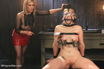 Photo number 16 from Maitresse Madeline Destroys Horny Anal Pain Slut shot for Whipped Ass on Kink.com. Featuring Delirious Hunter and Maitresse Madeline Marlowe in hardcore BDSM & Fetish porn.