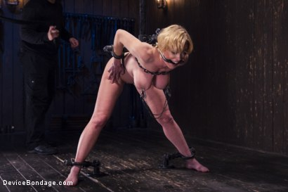 Photo number 11 from Darling's Decimation! shot for Device Bondage on Kink.com. Featuring Orlando and Dee Williams in hardcore BDSM & Fetish porn.