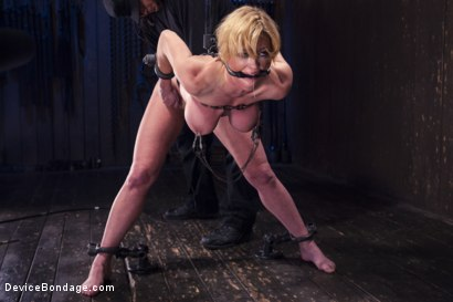 Photo number 14 from Darling's Decimation! shot for Device Bondage on Kink.com. Featuring Orlando and Dee Williams in hardcore BDSM & Fetish porn.