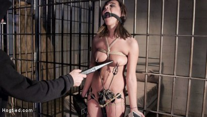 Photo number 6 from Wrong Place at the Wrong Time shot for Hogtied on Kink.com. Featuring Roxanne Rae in hardcore BDSM & Fetish porn.