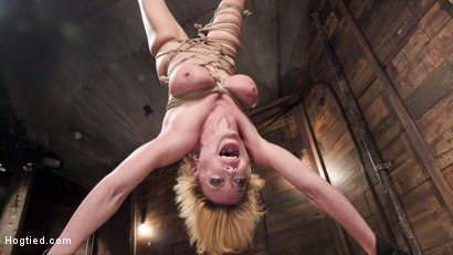 Photo number 12 from Busty Blond MILF molested in ruthless backbends shot for Hogtied on Kink.com. Featuring Dee Williams in hardcore BDSM & Fetish porn.