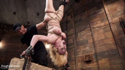Photo number 14 from Busty Blond MILF molested in ruthless backbends shot for Hogtied on Kink.com. Featuring Dee Williams in hardcore BDSM & Fetish porn.