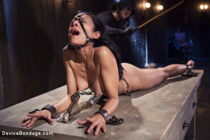 Photo number 5 from Betraying Beretta James shot for Device Bondage on Kink.com. Featuring Orlando and Beretta James in hardcore BDSM & Fetish porn.