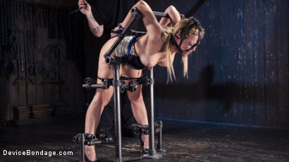 Photo number 5 from Hot Blonde in Brutal Device Bondage shot for Device Bondage on Kink.com. Featuring Cherie DeVille in hardcore BDSM & Fetish porn.