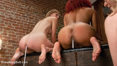 Photo number 8 from Nina Hartley trains the gape shot for Everything Butt on Kink.com. Featuring Daisy Ducati, Mona Wales and Nina Hartley in hardcore BDSM & Fetish porn.