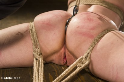 Photo number 15 from Bring on the Pain! shot for Sadistic Rope on Kink.com. Featuring Katharine Cane in hardcore BDSM & Fetish porn.