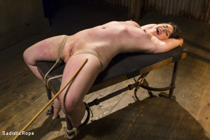 Photo number 8 from Bring on the Pain! shot for Sadistic Rope on Kink.com. Featuring Katharine Cane in hardcore BDSM & Fetish porn.