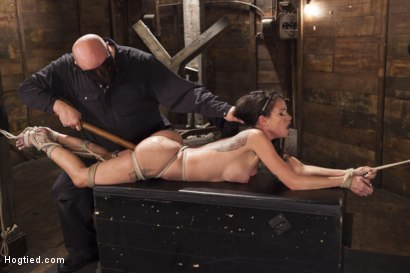 Photo number 7 from Big tit Brunette caught in brutal bondage. shot for Hogtied on Kink.com. Featuring Sgt. Major and Raven Bay in hardcore BDSM & Fetish porn.