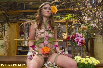 Photo number 4 from Young Slut Comes Into Full Bloom in City of Public Nudity shot for Public Disgrace on Kink.com. Featuring Steve Holmes, Jodi Taylor, Karlo Karrera, Daisy Ducati and Juliette March in hardcore BDSM & Fetish porn.