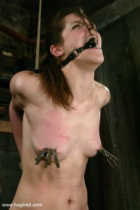 Photo number 7 from Bobbi Starr shot for Hogtied on Kink.com. Featuring Bobbi Starr in hardcore BDSM & Fetish porn.