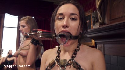 Photo number 8 from Disorderly Anal Slaves Disciplined  shot for The Upper Floor on Kink.com. Featuring Gabriella Paltrova, Karlo Karrera, Sydney Cole and Dee Williams in hardcore BDSM & Fetish porn.